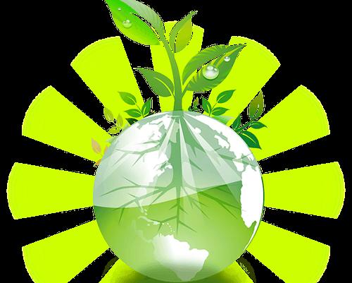 logo dessin plante dans bulle d'eau